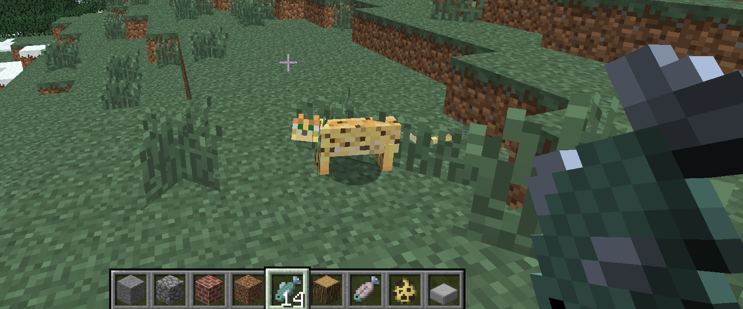 How to tame a cat in Minecraft 27