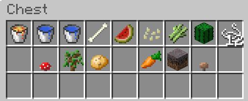 minecraft sky survival inventory