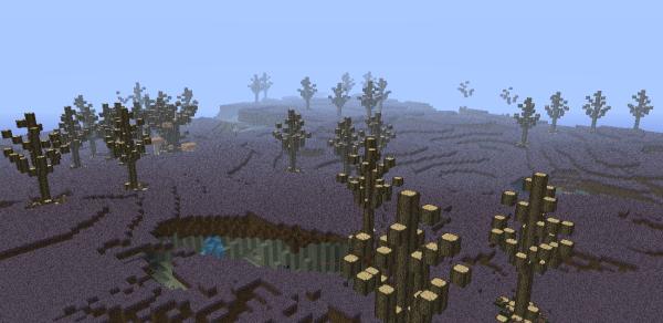 minecraft mushroom plains