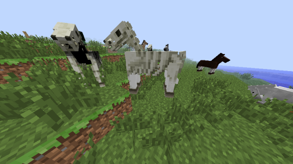 minecraft skeleton horse