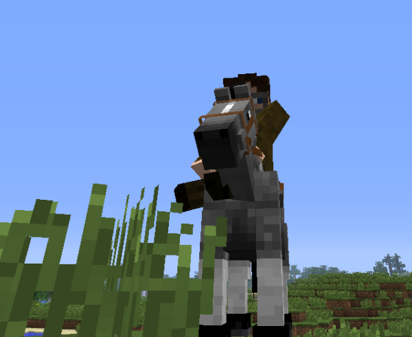 how to get a skeleton horse in minecraft