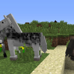 Minecraft Horses, A How To Guide For Minecraft 1.6